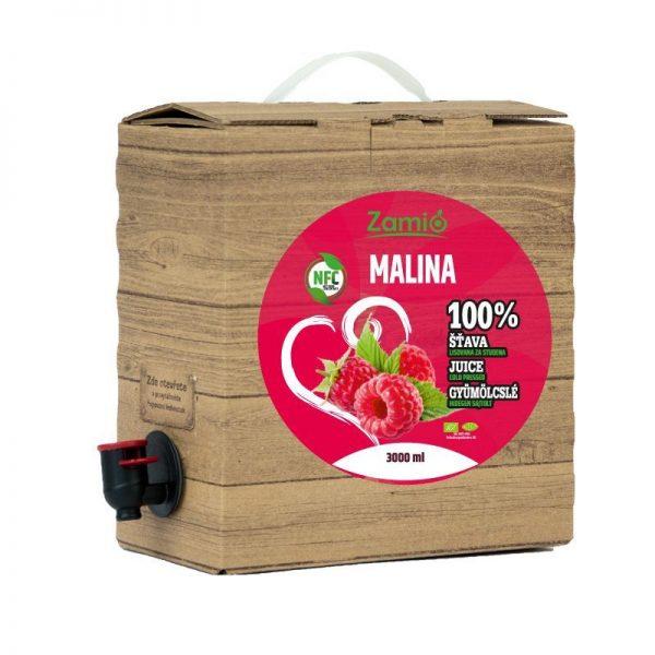 100% ŠŤAVA MALINA 3L